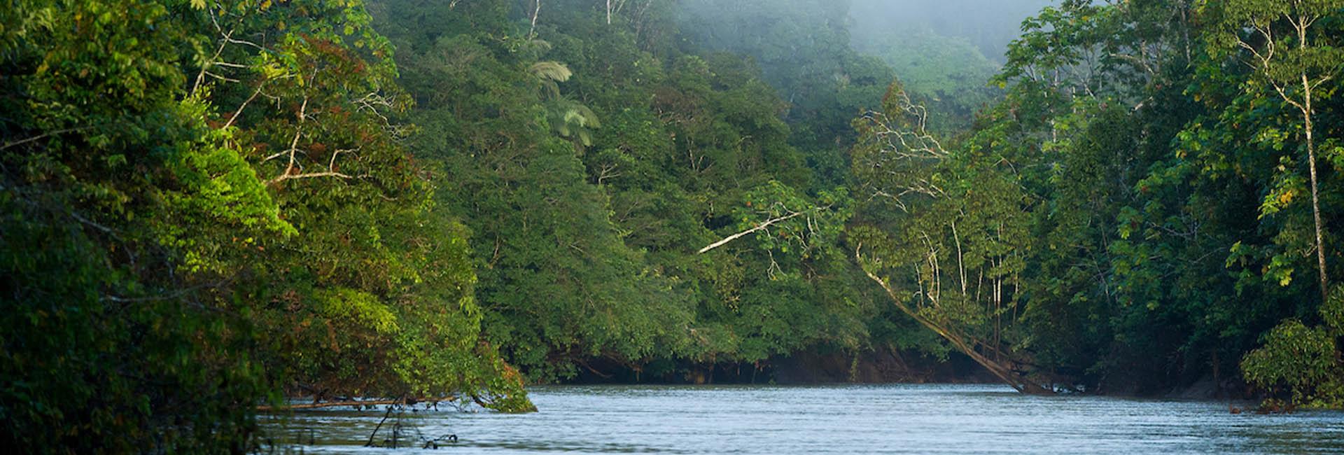 Tiputini River in the Ecuadorian Amazon